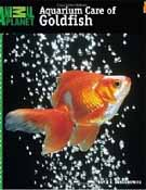 Breeding and How to Feed and take Care of your Goldfish.